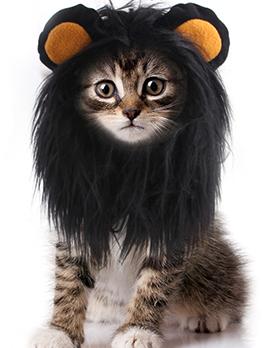 Creative Funny Cat Dog Wig Lion Headgear