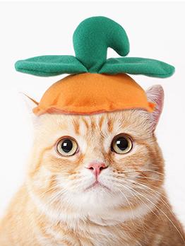 Green Leaf Pumpkin Headgear Pet Funny Headgear